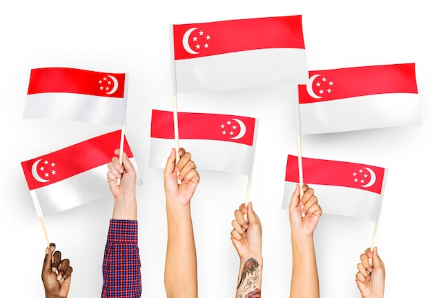 Ręce macha flagami singapuru