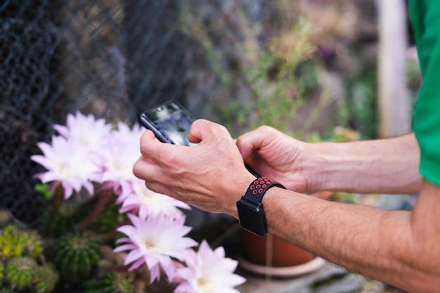 Ręce mężczyzny robienie zdjęć z telefonu komórkowego. kwiat kaktusa.