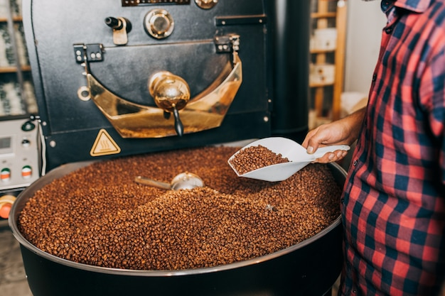 Ręce mężczyzny trzymające świeżo palone aromatyczne ziarna kawy nad nowoczesną maszyną do prażenia kawy.