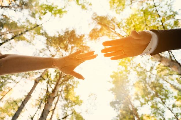 Ręce nowożeńców sięgają do siebie po parku lub lesie.