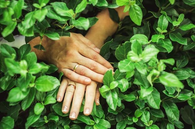 Ręce panny młodej i pana młodego z ślubu i pierścionki zaręczynowe