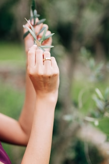 Ręce panny młodej trzymają zieloną gałąź zbliżenia drzewa