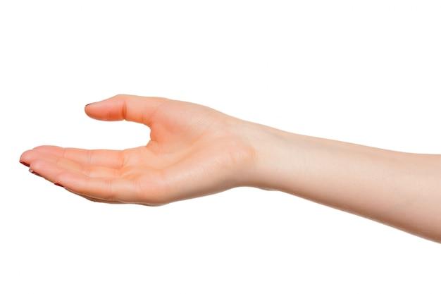 Ręce podejmują gest otwartej dłoni do trzymania, odizolowane