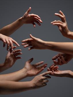 Ręce tłumu narodów w kontakcie na białym tle na szarym tle studyjnym koncepcja relacji międzyludzkich