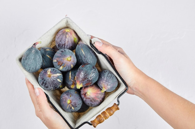 Ręce, trzymając kosz fioletowych fig na białym tle