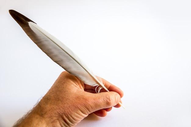 Ręczne pisanie z ptasim piórem na białym tle