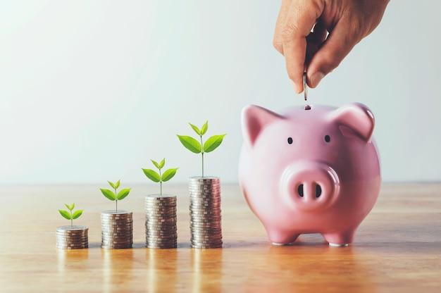Ręczne wkładanie monet do skarbonki ze stosem pieniędzy i uprawą roślin. koncepcja finansów i rachunkowości