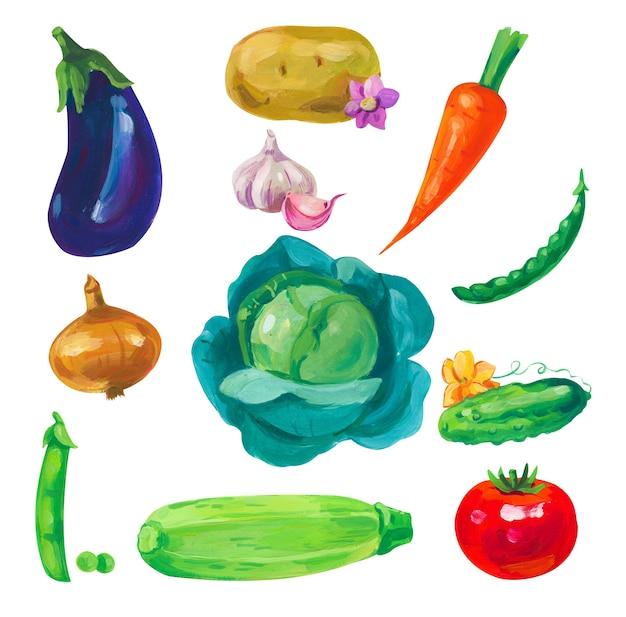 Ręcznie malowane akrylowe lub gwaszowe elementy warzywne na białym tle