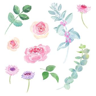 Ręcznie malowane akwarelowe ilustracje pięknych przepięknych róż chabrów eukaliptusa gunni i ucha jagniąt
