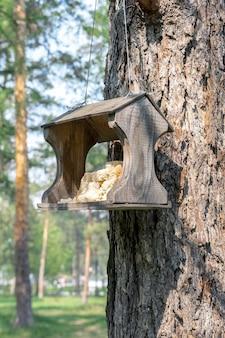 Ręcznie robiony karmnik dla dzikich ptaków wisi na pniu sosny w parku rekreacyjnym