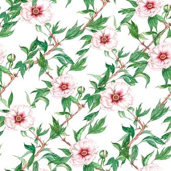 Ręcznie rysowane akwarela bezszwowe wzór z białej piwonii drzewo kwiaty i liście