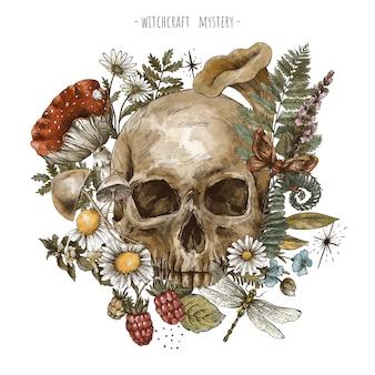 Ręcznie rysowane kwiatowy czaszki, ilustracja kwiaty czarów. wicca herms, grzyby, amanita, paproć na białym tle