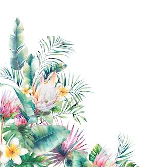 Ręcznie rysowane projekt karty z pozdrowieniami z egzotycznych liści i kwiatów protea na białym tle.
