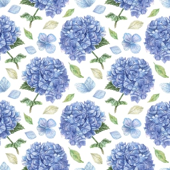 Ręcznie rysowane wzór z chmurami niebieskiej hortensji i białymi płatkami