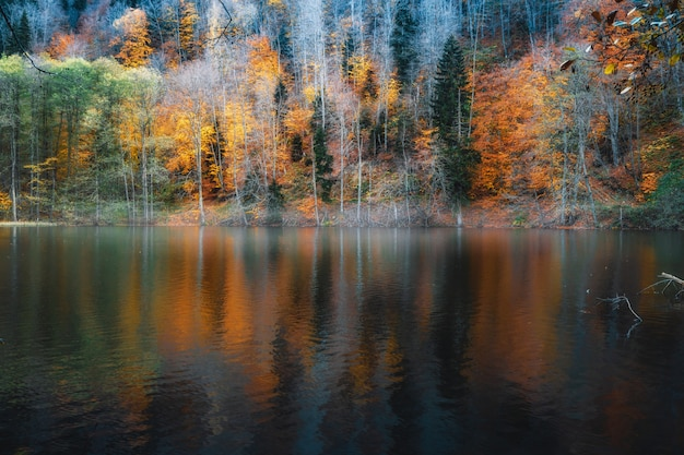 Refleksja nad jeziorem bateti w stanie georgia