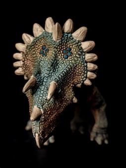 Regaliceratops dinosaur on black