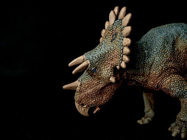 Regaliceratops dinosaur on black