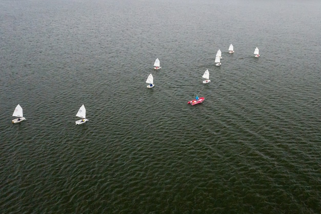 Regaty żeglarskie na morzu. na wodzie pływa wiele białych żagli.