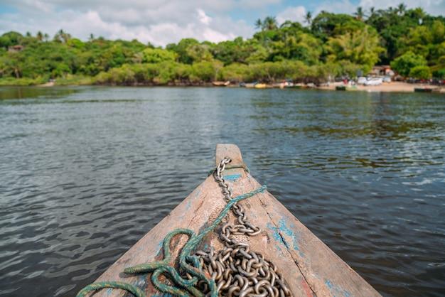 Rejs łodzią przez namorzynowe bagna w brazylii