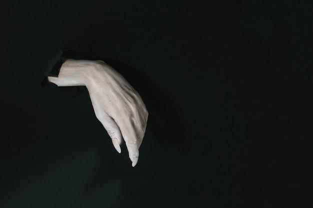 Ręka czarownica z długimi paznokciami
