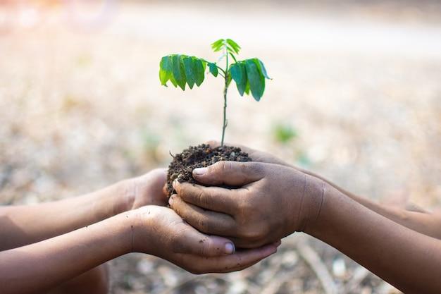 Ręka dzieci trzyma rośliny i ziemi z tłem bokeh i natury