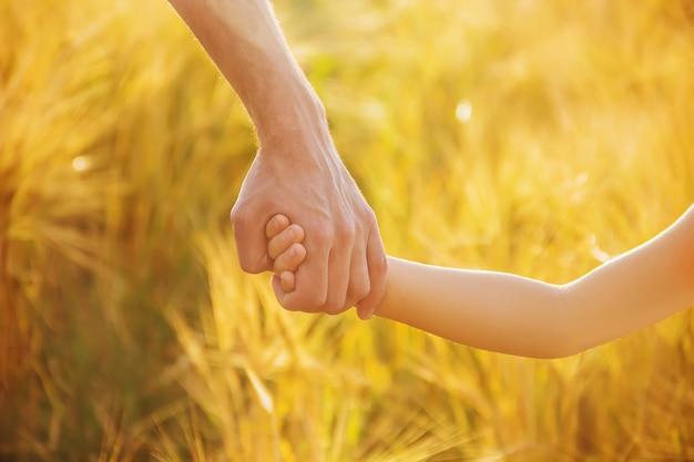 Ręka dziecka i ojca na polu pszenicy.