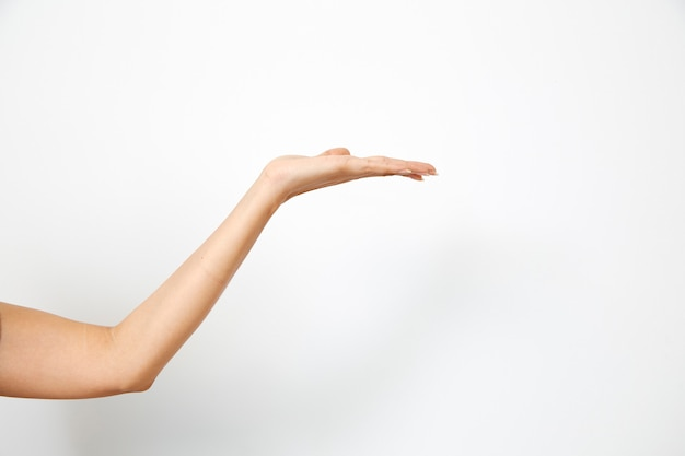 Ręka kobiety trzyma coś