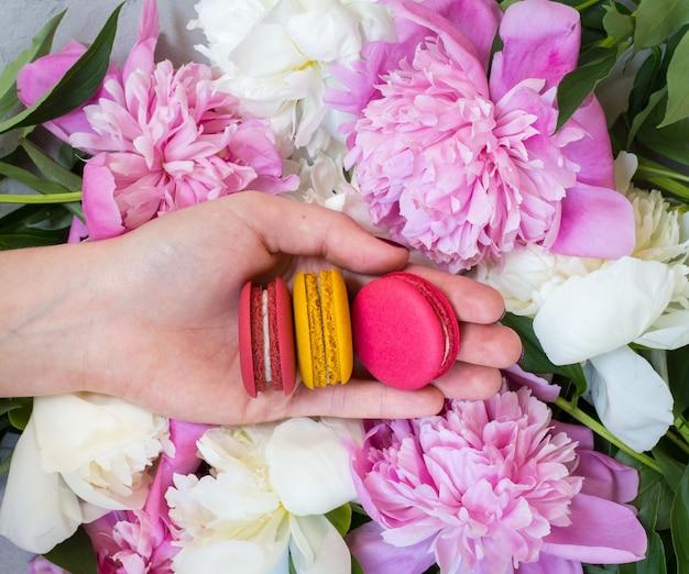 Ręka kobiety trzymającej makaroniki na stole z różowe piwonie, widok z góry, leżał płasko
