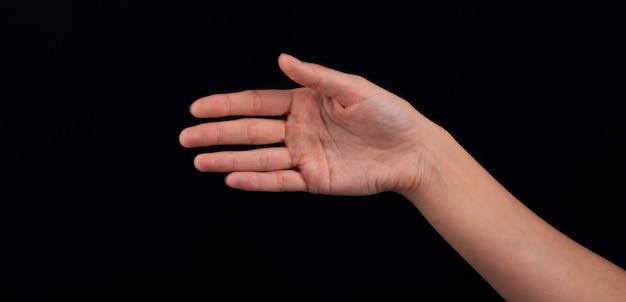 Ręka kobiety