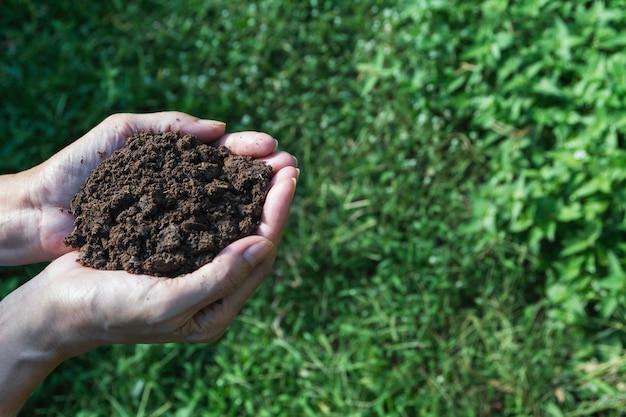 Ręka męska mienie ziemia w rękach dla zasadzać z copyspace.