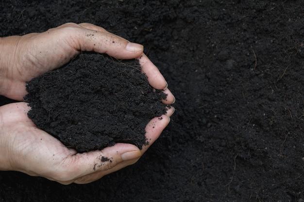 Ręka męska mienie ziemia w rękach dla zasadzać.