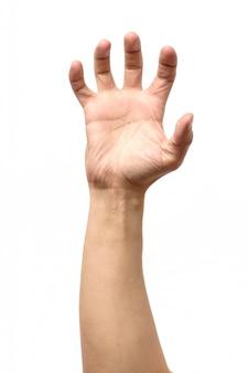 Ręka mężczyzny na białym tle. chwyć, złap lub złap