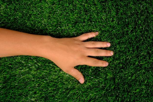 Ręka na trawniku, lewa ręka na zielonej trawie