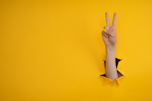 Ręka pokazuje gest pokoju przez rozdarty żółty papier tle. zwycięstwo, znak v.