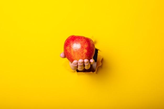 Ręka trzyma czerwone jabłko na żółto