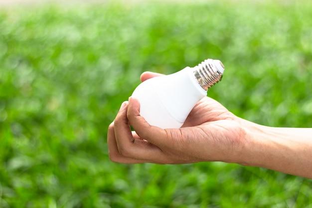 Ręka trzyma dowodzoną żarówkę z oświetleniem na zielonym natury tle.