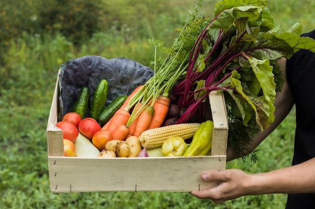 Ręka trzyma drewniane pudełko pełne świeżych warzyw