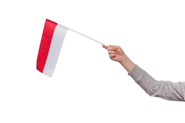 Ręka trzyma flagę polski na białym tle