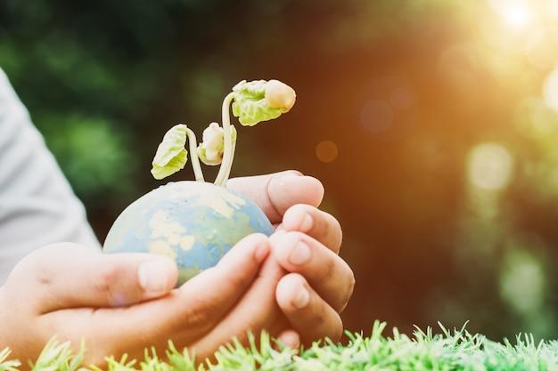 Ręka trzyma gliniany kula ziemska model z obsiewanie rośliną dla save światu w słonecznym dniu na zielonej trawie