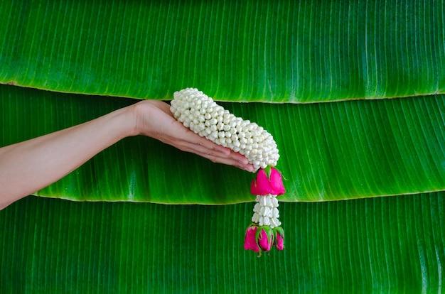 Ręka trzyma jaśminową girlandę z mokrym tłem liści bananów dla koncepcji festiwalu songkran.