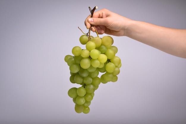 Ręka trzyma kiść winogron neutralne tło