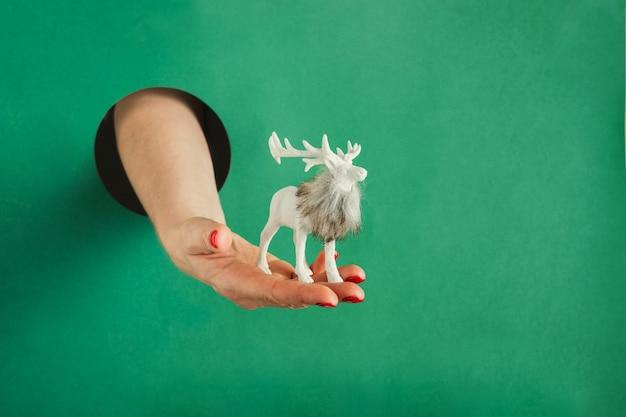Ręka trzyma pudełko na boże narodzenie przez okrągły otwór w zielonym papierze.