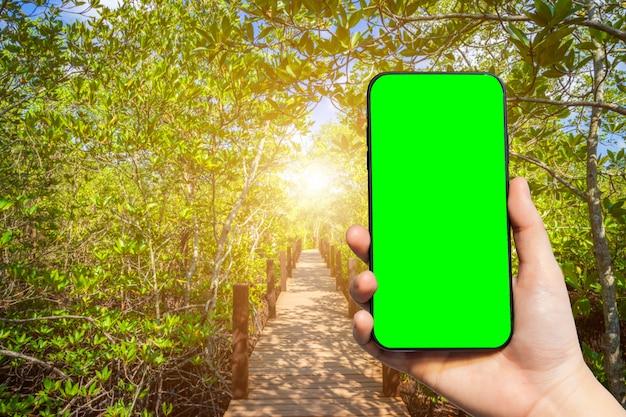 Ręka trzyma pusty smartfon na tle naturalnego krajobrazu