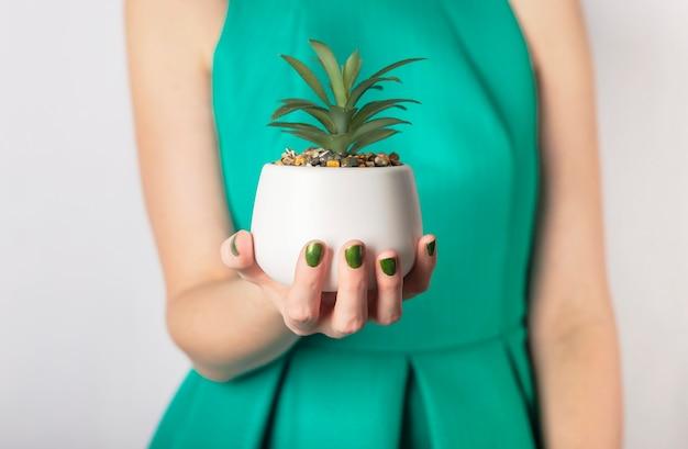 Ręka trzyma zieloną roślinę w doniczce. kobieta w zielonej sukience iz zielonymi paznokciami.