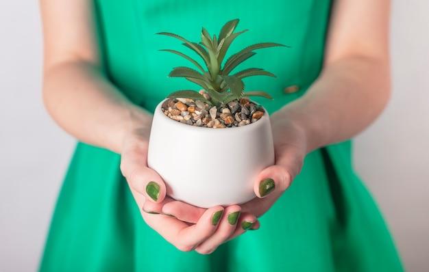 Ręka trzyma zieloną roślinę w doniczce. kobieta w zielonej sukni iz zielonymi paznokciami.