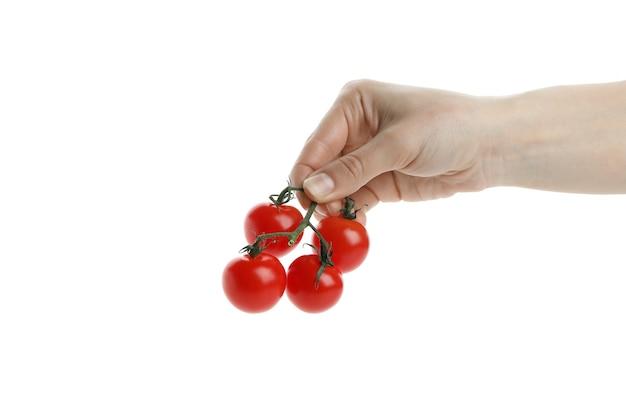 Ręka trzymać pomidor wiśniowy, na białym tle