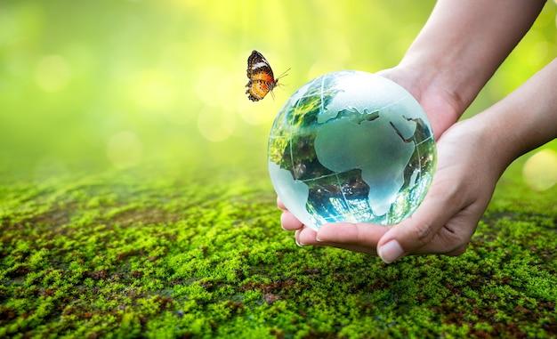 Ręka trzymająca globus z motylem w pobliżu