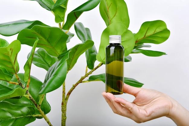 Ręka trzymająca naturalne opakowania na butelki do pielęgnacji skóry z czystą zieloną esencją roślinną