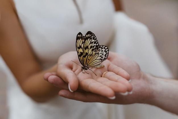Ręka w rękę w romantycznej randce. ręka w rękę w dniu ślubu. nowożeńcy delikatnie trzymają się za ręce. jasny żółty motyl siedzi na rękach kobiety z bliska