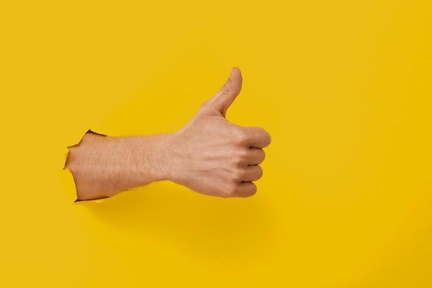 Ręka w żółtym modnym kolorze.